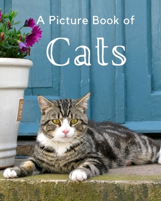 A Picture Book of Cats: A Beautiful Picture Book for Seniors With Alzheimer's or Dementia. A Wonderful Gift for Cat Lovers. Cover Image