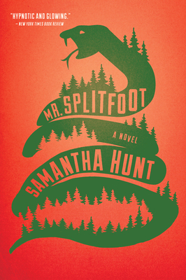 Mr. Splitfoot Cover Image
