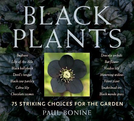 Black Plants Cover