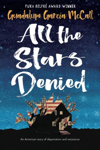 All the Stars Denied Cover Image