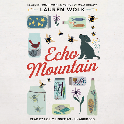 Echo Mountain Cover Image