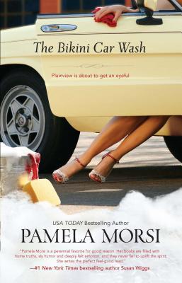 The Bikini Car Wash Cover
