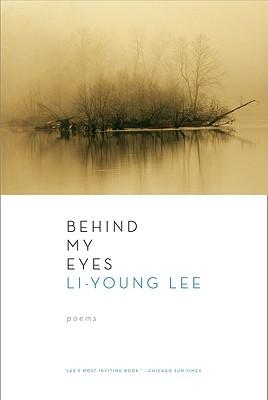 Behind My Eyes Cover