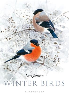 Winter Birds Cover Image