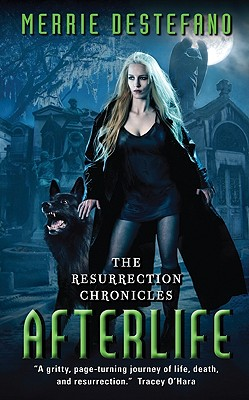 Afterlife: The Resurrection Chronicles Cover Image