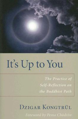 It's Up to You: The Practice of Self-Reflection on the Buddhist Path Cover Image