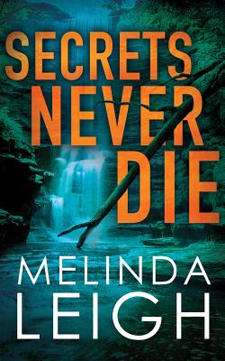 Secrets Never Die (Morgan Dane #5) Cover Image