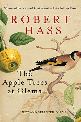 The Apple Trees at Olema: A Novel of Suspense Cover Image