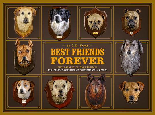 Best Friends Forever: The Greatest Collection of Taxidermy Dogs on Earth Cover Image