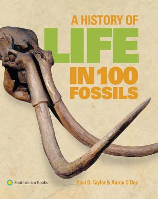 A History of Life in 100 Fossils Cover Image