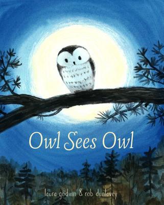 Owl Sees Owl by Laura Godwin