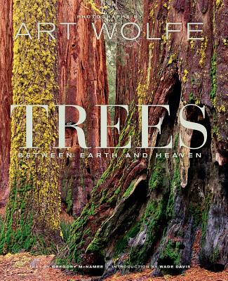 Trees: Between Earth and Heaven Cover Image