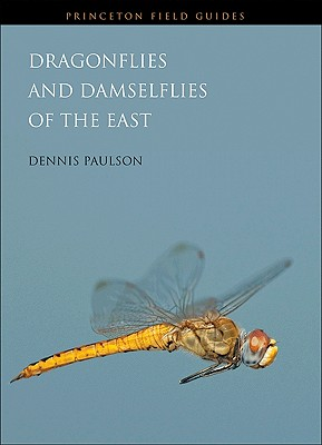 Dragonflies and Damselflies of the East (Princeton Field Guides #80) Cover Image