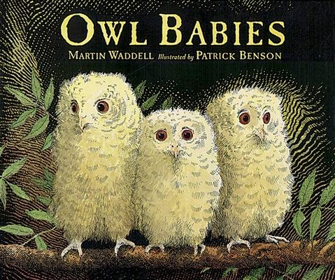 Owl Babies Big Book Cover Image