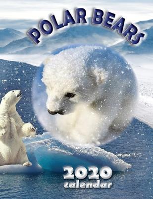 Polar Bears 2020 Calendar Cover Image