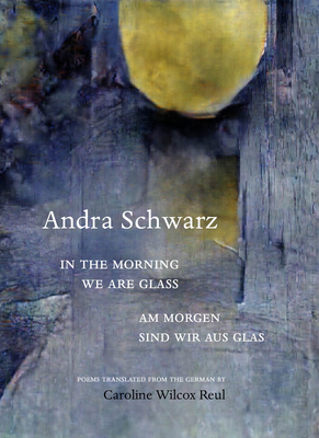 Cover for In the Morning We Are Glass