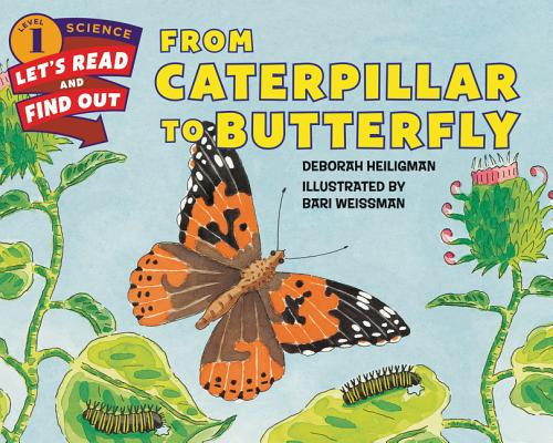 From Caterpillar to Butterfly (Let's-Read-and-Find-Out Science 1) Cover Image