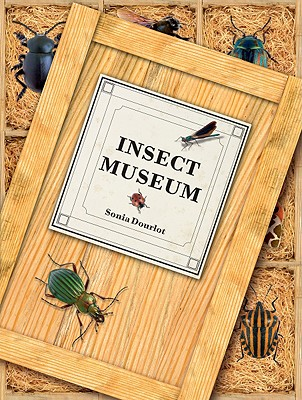 Cover for Insect Museum