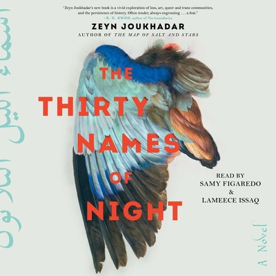 Cover for The Thirty Names of Night