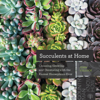 Succulents at Home: Choosing, Growing, and Decorating with the Easiest Houseplants Ever Cover Image