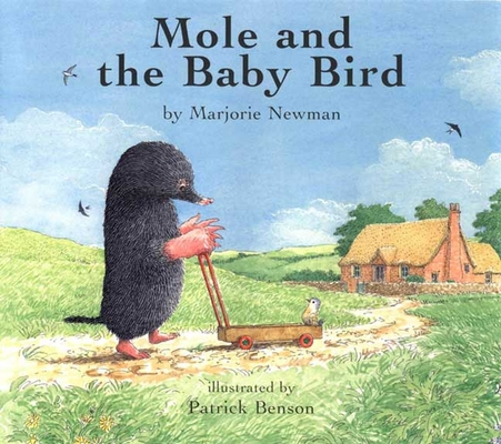 Mole and the Baby Bird Cover