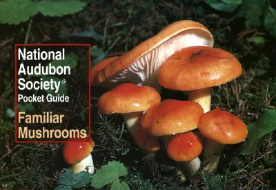 National Audubon Society Pocket Guide: Familiar Mushrooms (National Audubon Society Pocket Guides) Cover Image