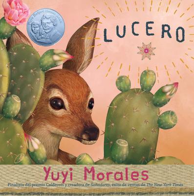 Lucero cover