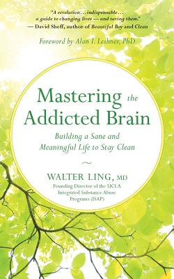 Mastering the Addicted Brain: Building a Sane and Meaningful Life to Stay Clean Cover Image