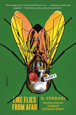 Like Flies from Afar: A Novel Cover Image