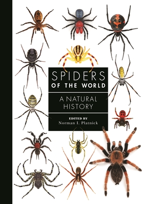Spiders of the World: A Natural History Cover Image