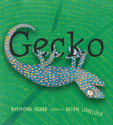 Gecko Cover Image