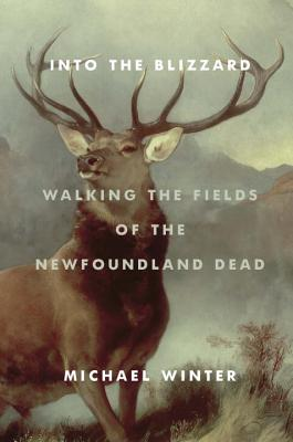 Into the Blizzard: Walking the Fields of the Newfoundland Dead Cover Image