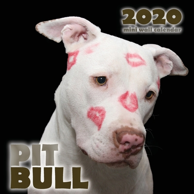 Pit Bull 2020 Mini Wall Calendar Cover Image