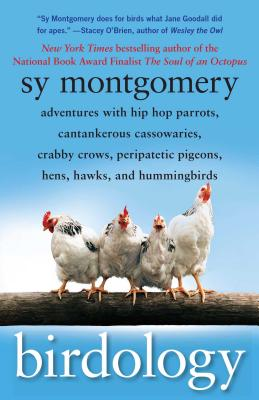 Birdology: Adventures with Hip Hop Parrots, Cantankerous Cassowaries, Crabby Crows, Peripatetic Pigeons, Hens, Hawks, and Hummingbirds Cover Image