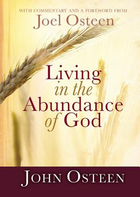 Living in the Abundance of God Cover