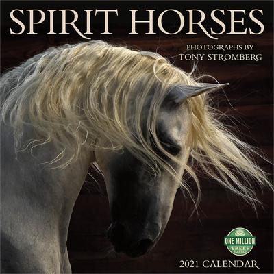 Spirit Horses 2021 Wall Calendar: Photographs by Tony Stromberg Cover Image