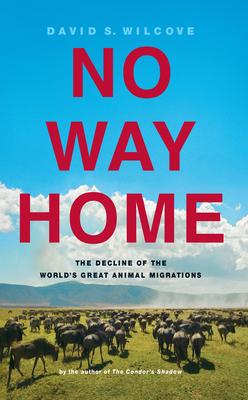 No Way Home Cover