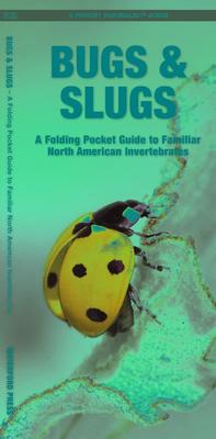 Bugs & Slugs, 2nd Edition: A Folding Pocket Guide to Familiar North American Invertebrates (Pocket Naturalist Guide) Cover Image