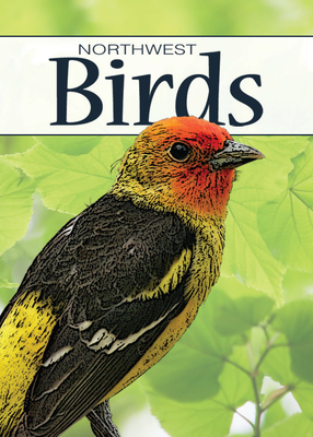 Birds of the Northwest Playing Cards (Nature's Wild Cards) Cover Image