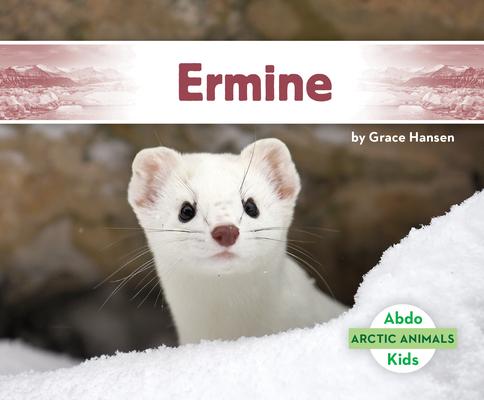 Ermine (Arctic Animals) Cover Image