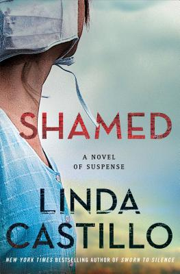 Shamed: A Kate Burkholder Novel Cover Image