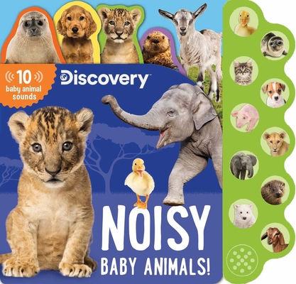 Discovery: Noisy Baby Animals! (10-Button Sound Books) Cover Image