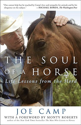 The Soul of a Horse Cover