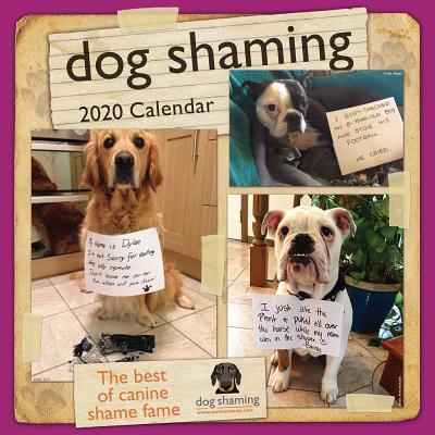Dog Shaming 2020 Wall Calendar Cover Image