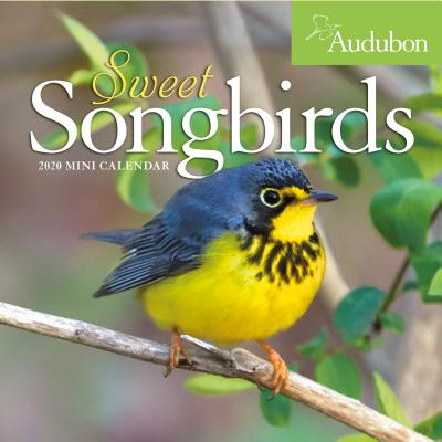 Audubon Sweet Songbirds Mini Wall Calendar 2020 Cover Image