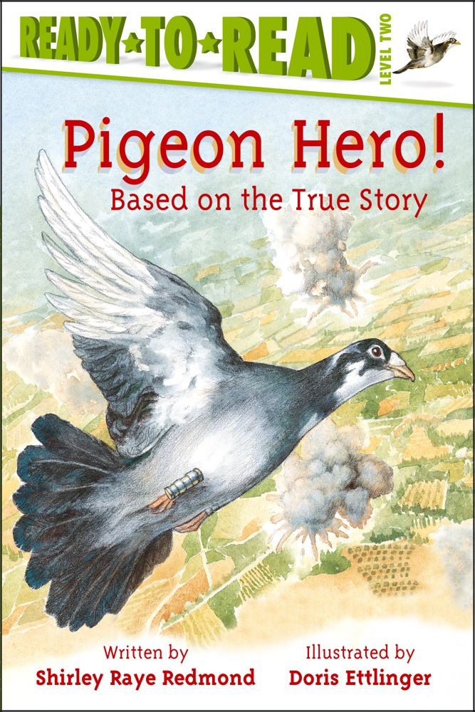 Pigeon Hero! Cover