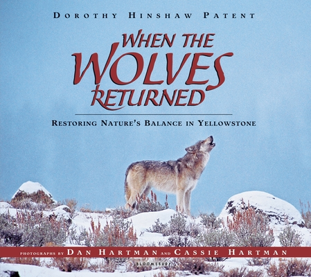 When the Wolves Returned Cover