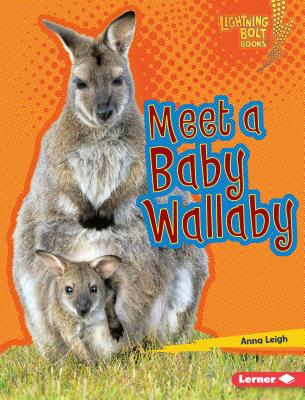 Meet a Baby Wallaby Cover Image