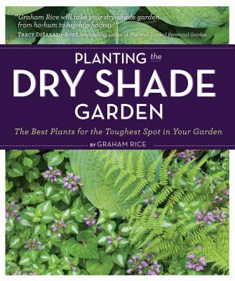 Planting the Dry Shade Garden Cover