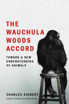 The Wauchula Woods Accord Cover